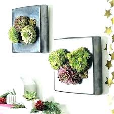 unique garden gifts unique garden gifts unusual gardening gifts vertical garden picture frame unusual quirky gift