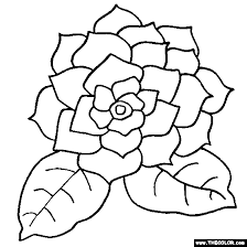 gardenia flower coloring page