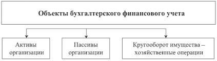 Глава Основы организации бухгалтерского финансового учета  Объекты бухгалтерского финансового учета