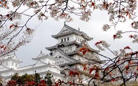 Himeji Castle Hd Wallpaper Hintergrund 1920x1200 Id