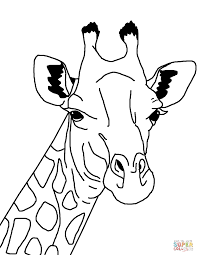 Color Pages Giraffe Coloring Pages Giraffe Coloring Pages Printable
