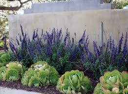Small Picture Inexpensive Landscaping Ideas to Beautify Your Yard http
