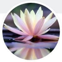 pennant hills nirvana yoga logo
