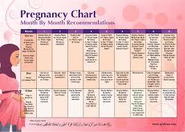 Pregnancy Month Chart Pregnancy Chart