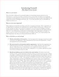 Freud Civilization And Its Discontents Essay Topics Examples Art