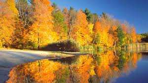 Image result for autumn photos