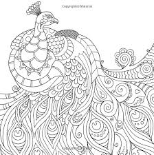 Small Picture peacock Wildlife Coloring pages colouring adult detailed advanced