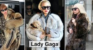 lady gaga glamorizes fur