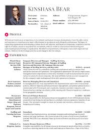 Hr Director Resume Sample Templates Project Manager Senior Pdf Stock