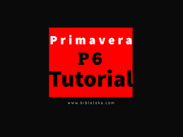 Primavera P6 Tutorial Course Beginner To Advanced Expert