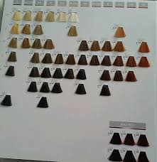 New Goldwell Topchic Colorance Color Chart New 22 99