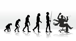 the evolution of stress paleo plan evolution of stressors