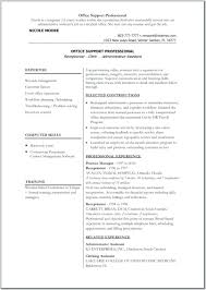 Download Free Resume Templates For Word Professional Antiquechairsco