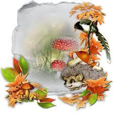 Výsledek obrázku pro pinterest podzim