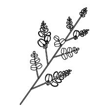 塗り絵に最適な白黒でかわいい萩の無料イラスト商用フリー オイデ43