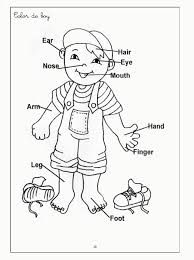 Parts Of The Body Coloring Pages For Preschool - Ebcs #5d09932d70e3