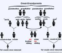 Family Tree Name Chart Best 25 Family Tree Chart Ideas