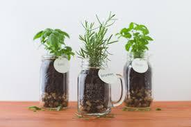 mason jar garden coworker gift
