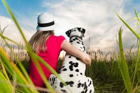 Resultado de imagen para Dalmatian dog, hugging