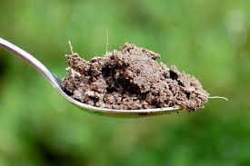 Image result for spoonful of dirt image