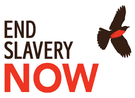 The Antislavery Movement Was Referred To As New Website Aims To Expand The Modern Abolition Movement Free The