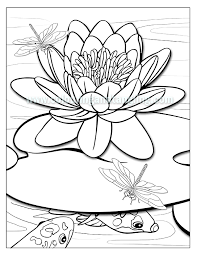 Small Picture Koi Fish Coloring Book Coloring Pages