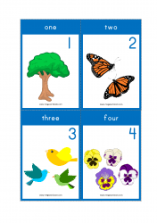 Download the free printable preschool/kindergarten sight word flashcards below. Flashcards For Toddlers Flashcards For Kids Preschool Flashcards Kindergarten Flash Cards Megaworkbook