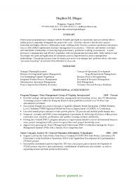 Project Manager Resume Summary Examples Complex Program Manager Resume Indeed Resume Summary Examples It 6
