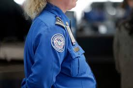 Tsa Officer Resume Eliolera Com