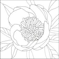Stained Glass Flower Patterns Awesome Making A Stained Glass Pattern For A Flower