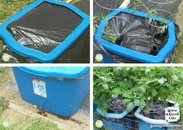 many versions of self watering containers also known as self watering grow boxes self