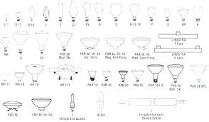 Bulbs Sizes 1stave Co