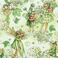 fabric garden. Michael Miller Fabric Morning Fairy Garden Flower 1 K