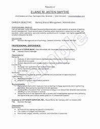 Restaurant Manager Resume Objective Restaurant Manager Resume Sample Luxury Elegant Grapher Resume