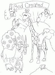 Adult Creation Coloring Pages For Preschoolers Bible Story