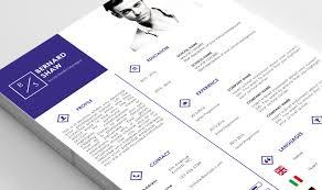 Resume Template By Nina Shaw Designer Thehungryjpegcom