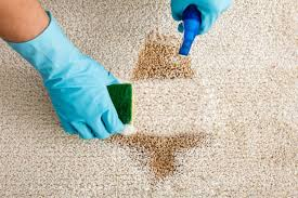 close up of person s hand cleaning stain with sponge on carpet
