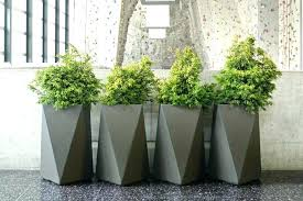giant pot plants full image for large outdoor plant pots large ceramic plant pots for giant pot plants