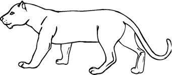 Small Picture Panther coloring page Free Printable Coloring Pages