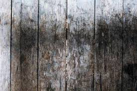 rustic wood floor background. Brilliant Rustic Rough Grungy Grey Wooden Floor Photo Background Rustic Wood Plank Closeup  Silver Background And Wood Floor Background R