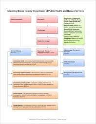 Department Flow Chart Template 9 Organizational Flow Chart Templates And Examples Pdf