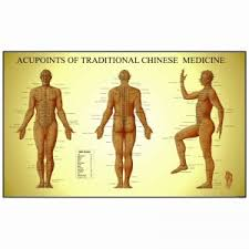 Acupuncture Chart Poster Acupuncture Charts Reflexology Charts Trigger Point Charts