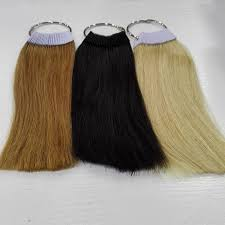 8 Inch Human Hair Color Ring For Salon Hair Color Chart Three Jeweled Hair Pins Jeweled Hair Accessories From Offbeige 88 64 Dhgate Com
