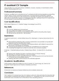 Curriculum Vitae Examples Classy IT Assistant CV Sample MyperfectCV