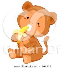 Cute Baby Monkey Sitting And Eating A Banana Posters Art