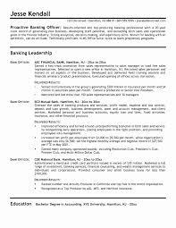 Brilliant Ideas Of Sample Resume For Bank Sle Resume Banking