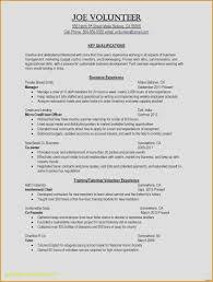 resume order of jobs 30 free first job gallery fresh resume sample