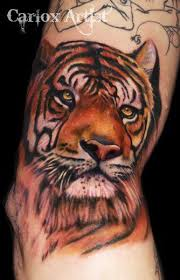 Tetování Tygr