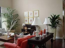 Big Living Room Plants 22 Design Ideas Plants For Your Room