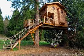 treehouse masters spa. Treehouse Masters Spa 1